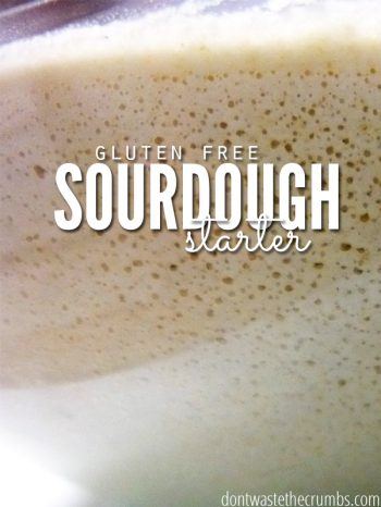 "Bowl of sourdough starter with text overlay, ""Gluten Free Sourdough Starter""."