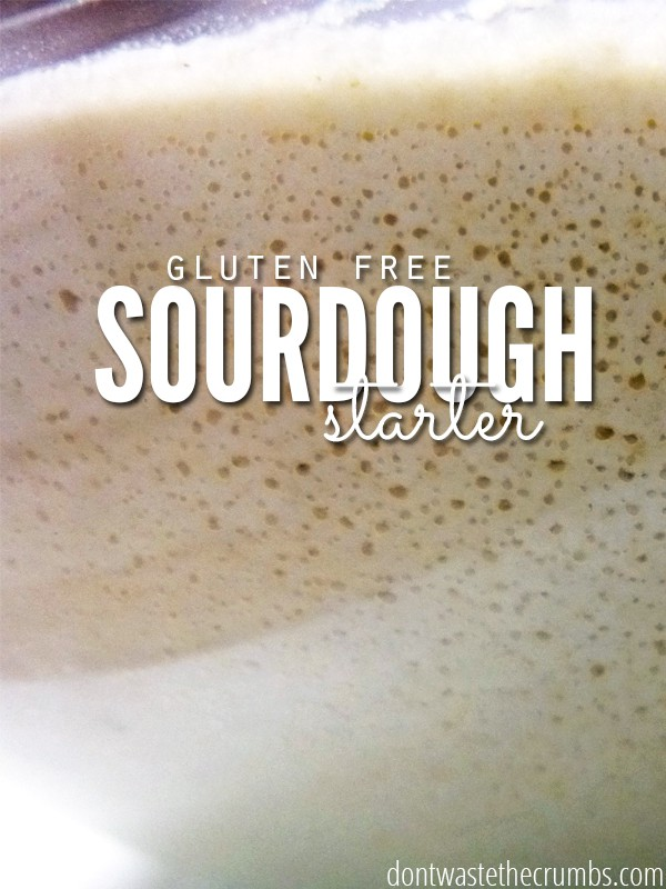 This step-by-step tutorial on making a gluten-free sourdough starter with brown rice flour. It can easily adapted to any gluten-free flour! :: dontwastethecrumbs.com