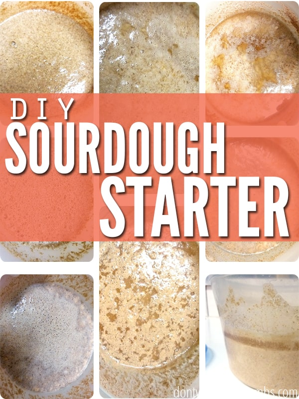 Learn how to make a sourdough starter! Capture all natural yeast from the air in seven days, spending only one minute each day adding flour and water. :: dontwastethecrumbs.com