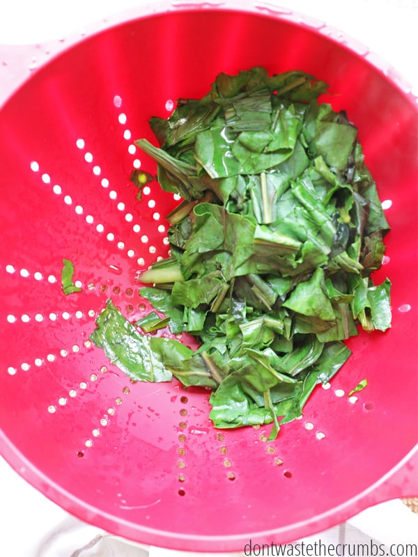 Save money by eating in season, but here's a budget tip: buy extra when prices are super low and preserve for later! Step-by-step tutorial for blanching greens like collard, beet greens and broccoli leaves. Simple steps to have fresh greens year-round! :: DontWastetheCrumbs.com
