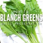 Blanchinc Greens-Cover