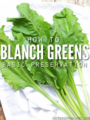 Basic Preservation: How to Blanch Greens