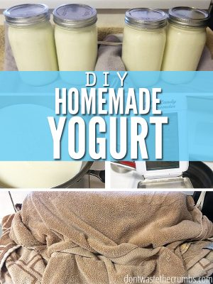 Making Homemade Yogurt, a New and Improved Simpler Method