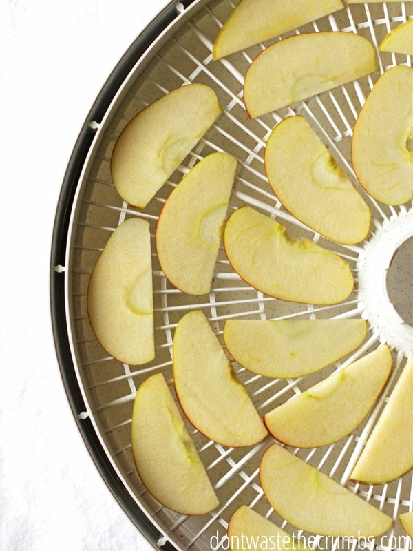 Homemade dried apples are easy to make, crunchy, and chewy. Learn with this recipe!