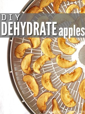 Dehydrate Apples and Make Apple Chips: Easy DIY
