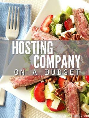 Hosting Company on a Budget