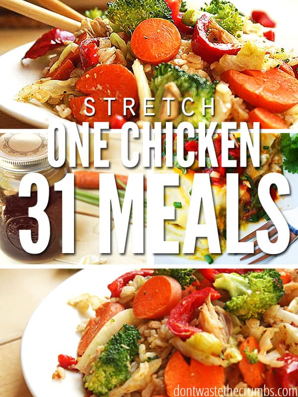 Amazing budget tip and money saving idea - stretch one chicken into 30+ meals! Learn the secret and get delicious recipes to help you save money while eating well! :: DontWastetheCrumbs.com