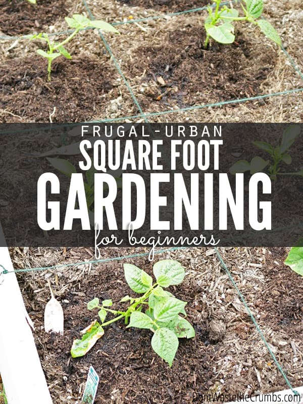 Maximize your small garden space with urban square foot gardening for beginners, a complete guide to picking plants, mapping your garden and even how to mark off the lines! An easy and practical read for every gardener! :: DontWastetheCrumbs.com
