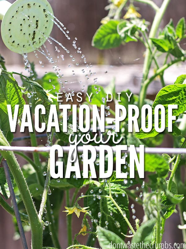 Vacation Proof Garden - Cover