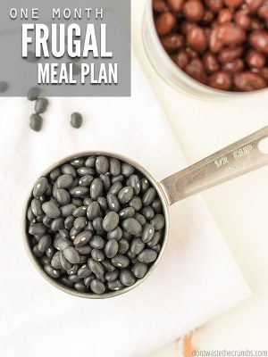 Frugal Meal Plan for August