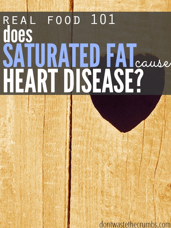 Join us on our journey as we look into the myth that saturated fats cause coronary artery disease! We turn over all the stones in this article for those looking for clean eating and healthy ideas!:: DontWastetheCrumbs.com