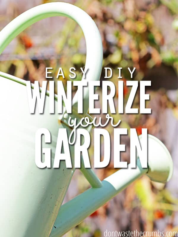Simple steps to winterize the vegetable garden, getting it ready for easy planting and a great harvest next year. Easy enough for any gardening enthusiast to use, and practical for everyone to follow! :: DontWastetheCrumbs.com