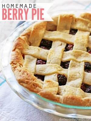 Blueberry (or Blackberry, Raspberry,or All of the Above!) Pie