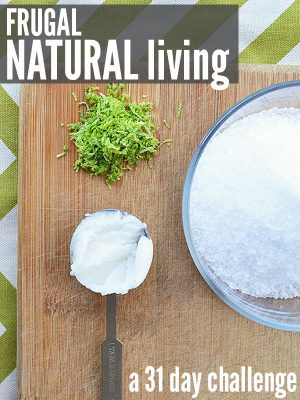 Frugal Natural Living 31 Day Challenge Re-Cap (Days 16-22)