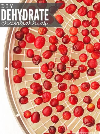 White rack of dehydrated cranberries. Text overlay DIY Dehydrate Cranberries..