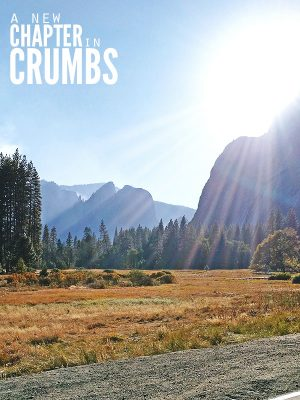 A New Chapter in Crumbs