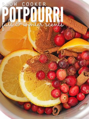 Slow Cooker Potpourri (Fall and Winter Scents)