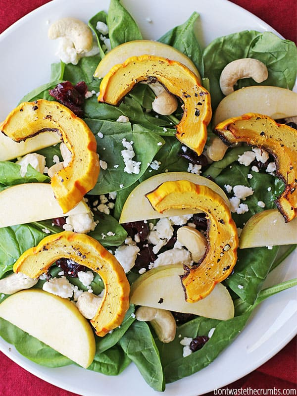 Oh man, this winter salad is SO GOOD! It's a delicata squash salad with apples and cranberries and a maple citrus vinaigrette and it is BY FAR my favorite way to eat delicata squash. I love the fresh,fall ingredients and even mypicky eaters cleared their plate! A great main dish salad that's less than $5 - put it on your winter menu for sure! :: DontWastetheCrumbs.com