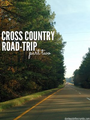 Cross-country Road Trip (part 2)