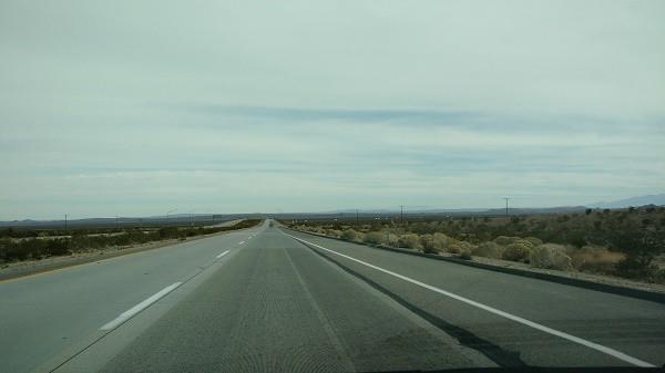 Day 1 Desert