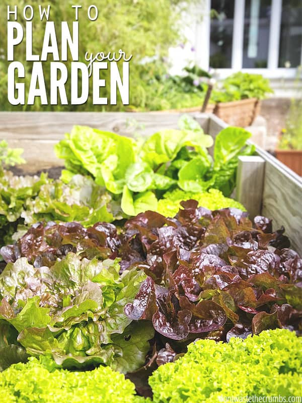 I know growing a garden is the best way to cut grocery expenses, but knowing how to get started can be overwhelming. Use this beginner's guide to plan your garden to maximize your space, effort and crop yield and make the most out of your garden this year! :: DontWastetheCrumbs.com