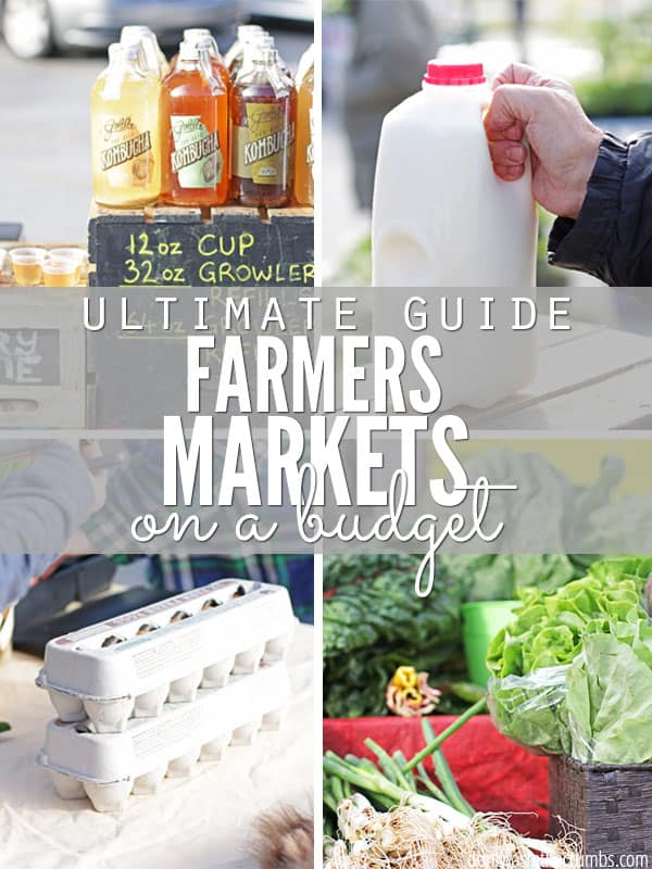 I love to shop with a farmers market budget, and this article explains how to get the most bang for your buck before you leave home, tips for when you're shopping at the market and then ideas to keeping your produce fresh when you're home. A great article for anyone who's looking to afford healthy food on a budget! :: DontWastetheCrumbs.com