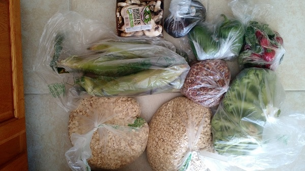 This real food family allots $330 for their monthly food budget. Every month they share what they bought and I'm always surprised at how far their money goes! :: DontWastetheCrumbs.com