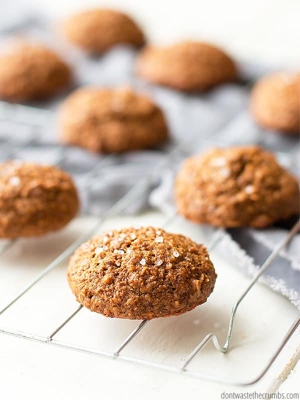 I'm in love with molasses breakfast cookies made without sugar. They're sweetened with molasses and honey and whole grains. Healthy enough for breakfast! :: DontWastetheCrumbs.com