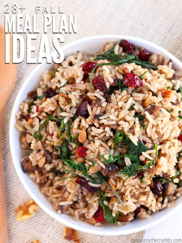 Fall food meal plan offers 4 weeks worth of delicious fall clean eating recipes on a budget, including recipes for breakfast, lunch and dessert too! :: DontWastetheCrumbs.com