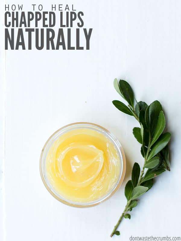 Your lip balm could be the cause of your chapped lips! Here's a simple method to heal chapped lips naturally using natural ingredients and without medication. :: DontWastetheCrumbs.com