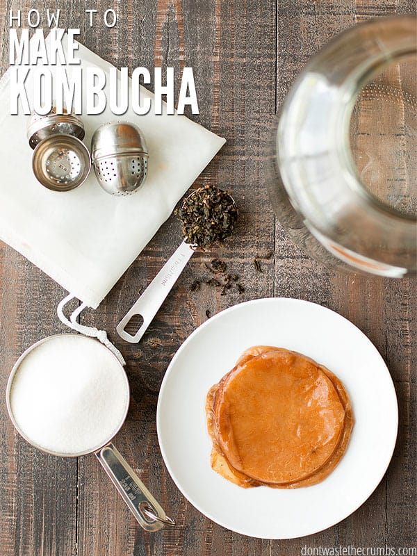 This kombucha recipe includes a step-by-step tutorial showing how you can easily make delicious, healthy homemade kombucha for just pennies.