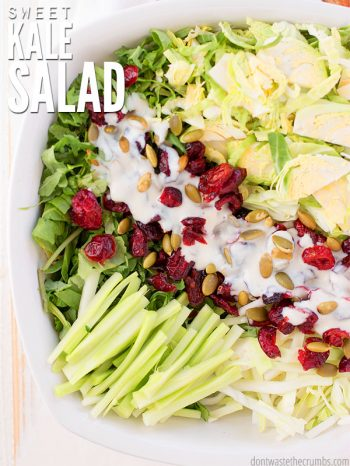 Incredibly delicious recipe for sweet kale salad with cranberries, almonds, & a creamy homemade greek yogurt dressing. Healthier than Costco's bagged salad! :: DontWastetheCrumbs.com