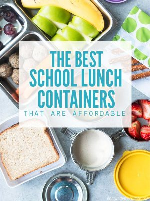 The Best School Lunch Boxes (on a budget)