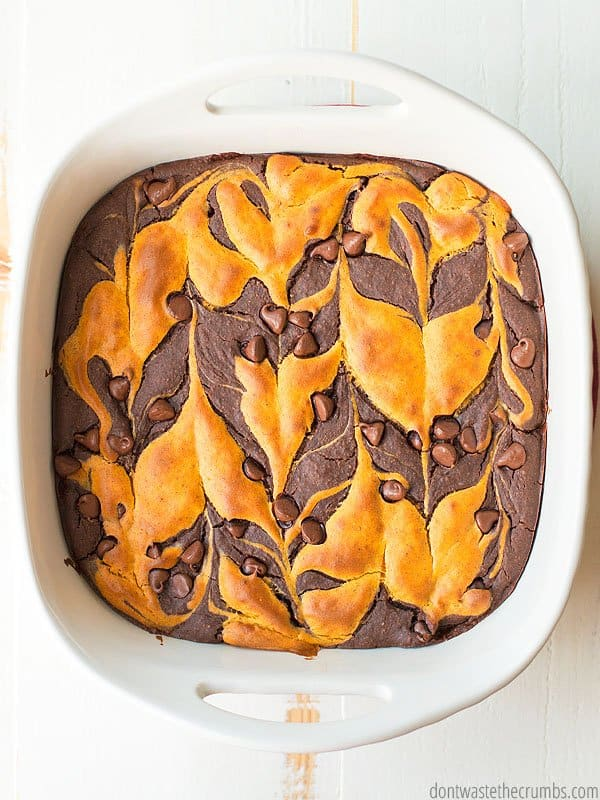 Need a new family favorite? Pumpkin swirl black bean brownies are it!