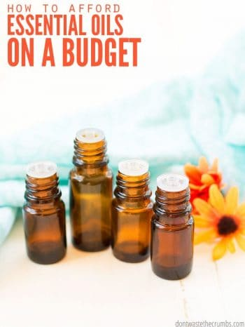 Four amber colored essential oil bottles next to a daisy flower. Text overlay How to Afford Essential Oils on a Budget.