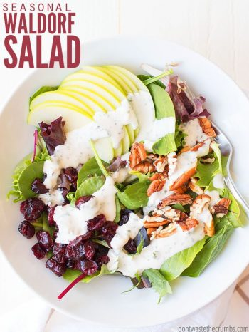 Classic white serving bowl filled with green leaf lettuce, garnished with sliced Granny Smith apples, dried cranberries, pecans and dressed with Ranch dressing. Text overlay Seasonal Waldorf Salad.