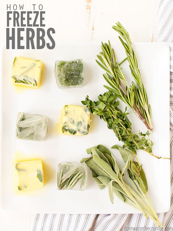 "Frozen herb cubes in olive oil and butter with fresh herbs laying on a cutting board. Text overlay says, ""How to Freeze Herbs""."