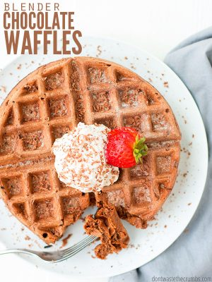 Double Chocolate Blender Waffles