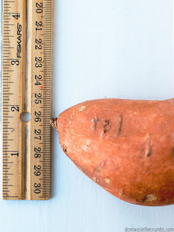 Making the best Instant Pot sweet potatoes is all about the width! Even if you have monster sweet potatoes, you can get them cooked just right with this easy tutorial!