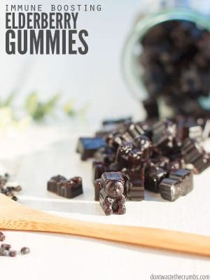 Learn how to make elderberry gummies in bulk for toddlers, kids and adults alike. It's so easy and costs 90% less than Walmart, Walgreens, CVS or Kroger!! : : DontWasteTheCrumbs.com