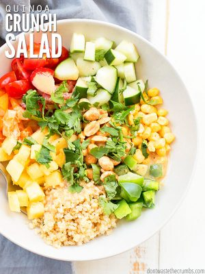 This easy crunchy quinoa salad recipe is vegan, but you can add feta or chicken, or even cranberries or avocado! Serve warm or cold with thai peanut sauce. :: DontWastetheCrumbs.com