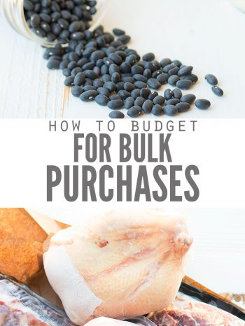 Budgeting for Buying Food in Bulk | | DontWasteTheCrumbs.com