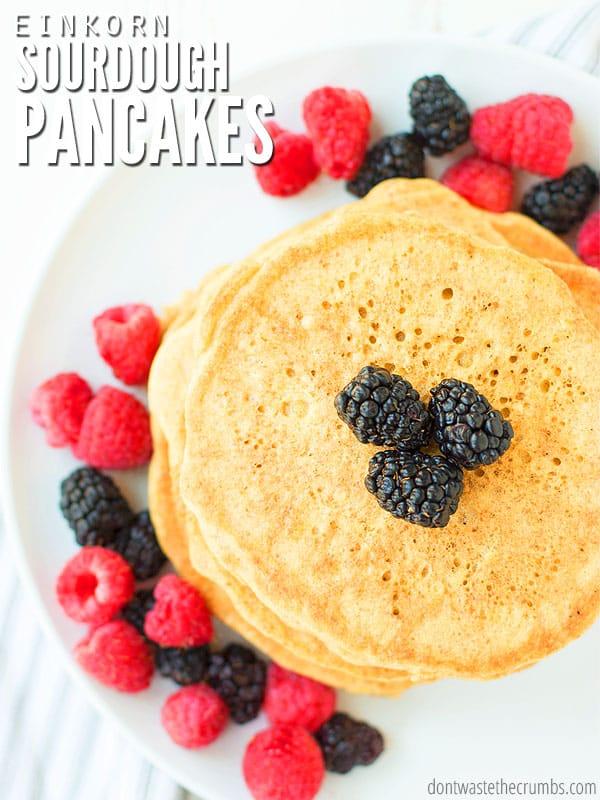 sourdough pancakes with a sourdough starter and einkorn flour