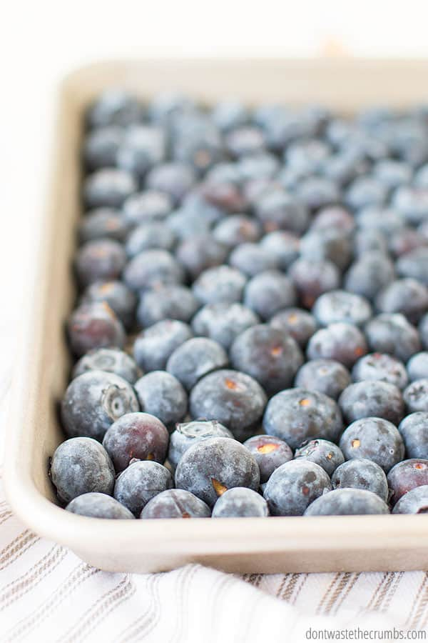 When to freeze fresh blueberries