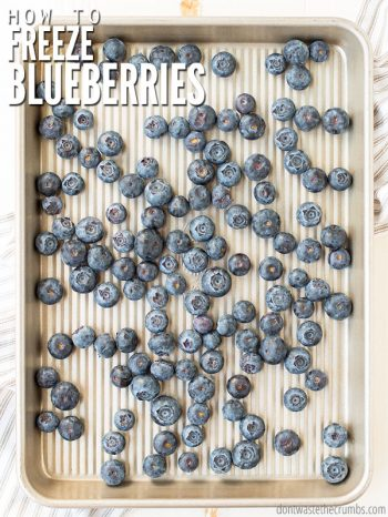 Learn how to freeze blueberries, the right way, so they don't get mushy! Plus tips to thaw. It works for strawberries and blackberries too, without sugar! :: DontWastetheCrumbs.com