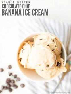 My homemade peanut butter chocolate chip banana ice cream recipe uses just one main ingredient and you don't need an ice cream maker - just a food processor or a blender! :: DontWastetheCrumbs.com
