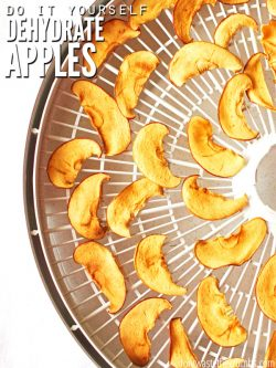 An easy tutorial on how to dehydrate apples, plus a way to add flavor and make dehydrated caramel apple chips - an excellent alternative to holiday candy! :: DontWastetheCrumbs.com