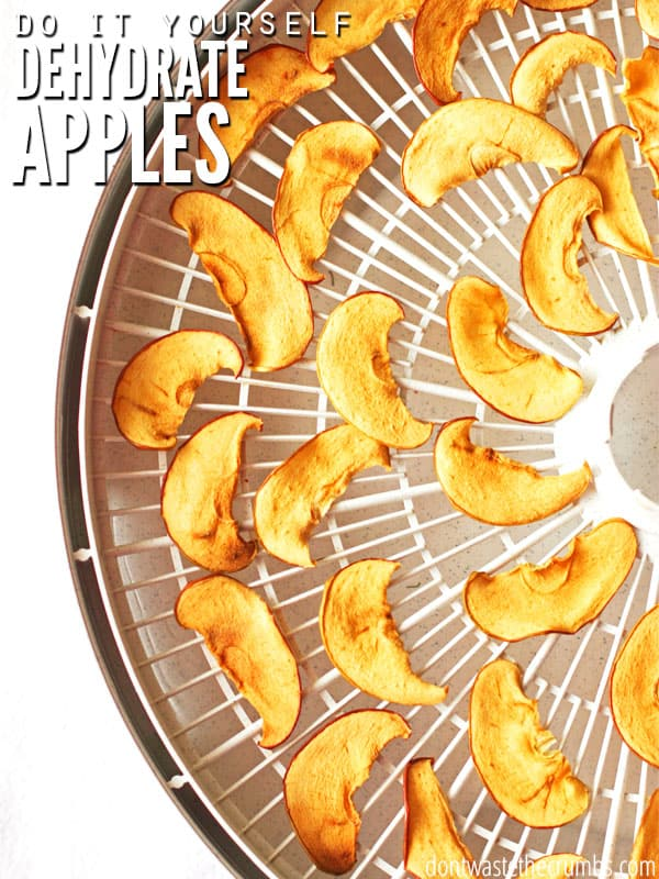 learn how to make apple chips by dehydrating apples with this easy tutorial