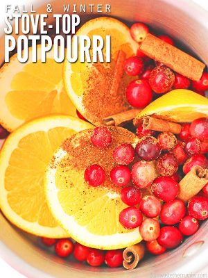 Here's an easy recipe for stovetop potpourri that smells just like Christmas! The best part - it can be adapted for slow cooker potpourri and makes for an easy homemade potpourri gift! It's cheaper than Williams Sonoma potpourri and adaptable for each holiday! :: DontWastetheCrumbs.com
