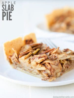 "Easy apple slab pie recipe that is versatile, make-ahead, and makes over 20 servings in a 9""x13"" pan! Use buttery homemade pie crust and a cinnamon topping. :: DontWastetheCrumbs.com"